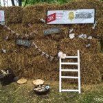 фото с летнего эко фестиваля Пастернак в Минске